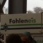 Fohleneis